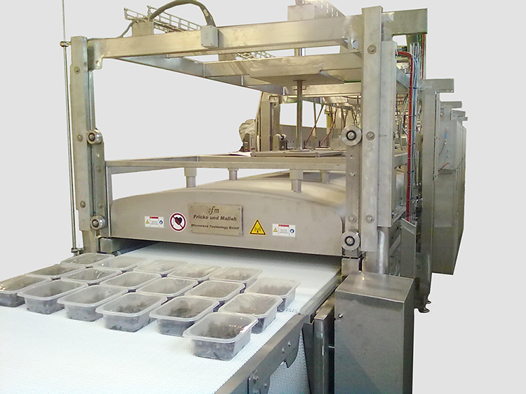 Modular microwave tunnel for homogeneous pasteurisation of packed mussels